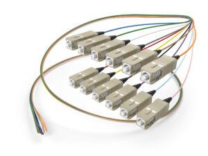 Image of OM3 SC 12 fiber pigtail
