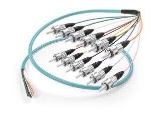Image of OM3 ST 12 fiber pigtail