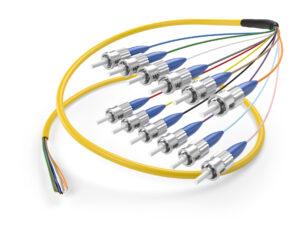 image of 12 fiber singlemode ST pigtail